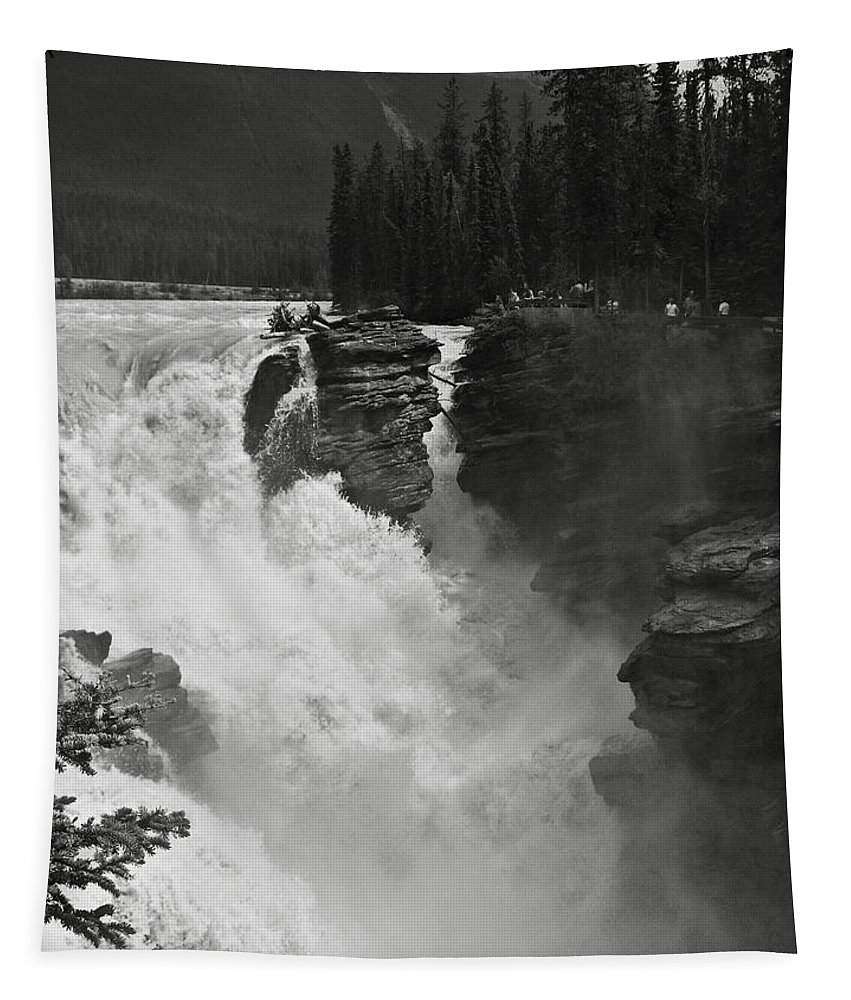 Bw Tapestry featuring the photograph Athabasca Falls by RicardMN Photography