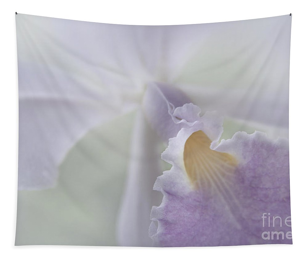Aloha Tapestry featuring the photograph Beauty In A Whisper by Sharon Mau