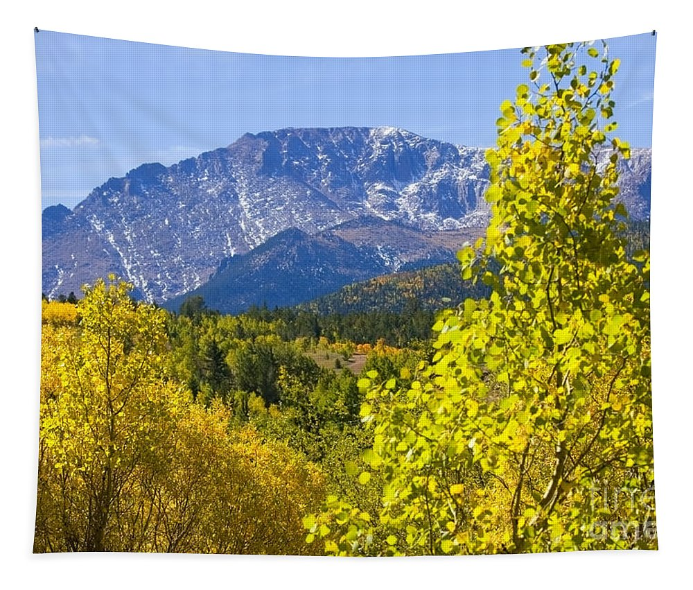 Autumn Tapestry featuring the photograph Crystal Creek Autumn by Steve Krull