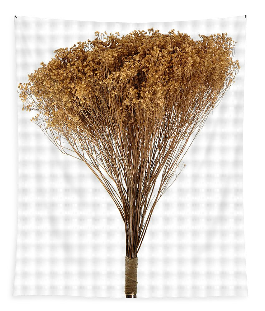 Flower Tapestry featuring the photograph Dry Flowers Bunch by Olivier Le Queinec