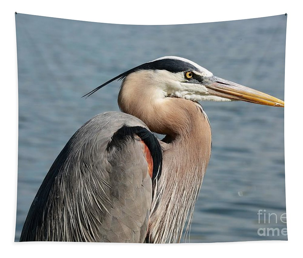 Heron Tapestry featuring the photograph Great Blue Heron Profile by Carol Groenen