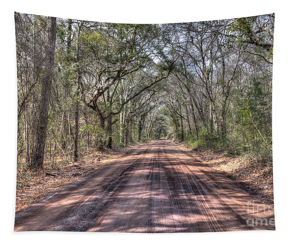 Angel Oak Tree Tapestry featuring the photograph Road To Angel Oak by Dale Powell