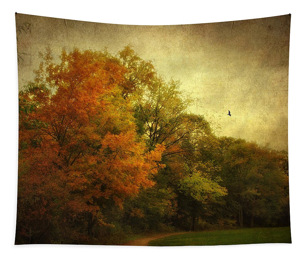 Autumn Tapestry featuring the photograph Last Light by Jessica Jenney
