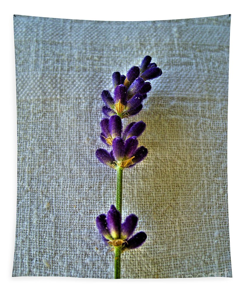 Lavender Tapestry featuring the photograph Lavender On Linen 2 by Nina Ficur Feenan