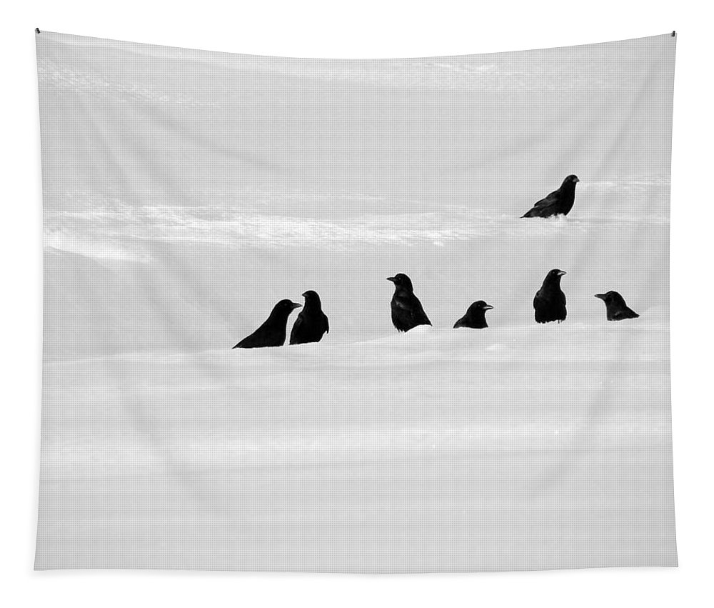 Crows In Snow Tapestry featuring the photograph 7 Snow Crows by Gothicrow Images