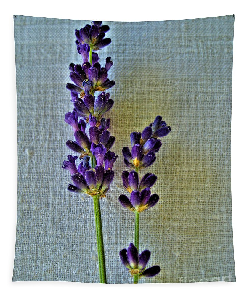 Lavender Tapestry featuring the photograph Lavender On Linen by Nina Ficur Feenan