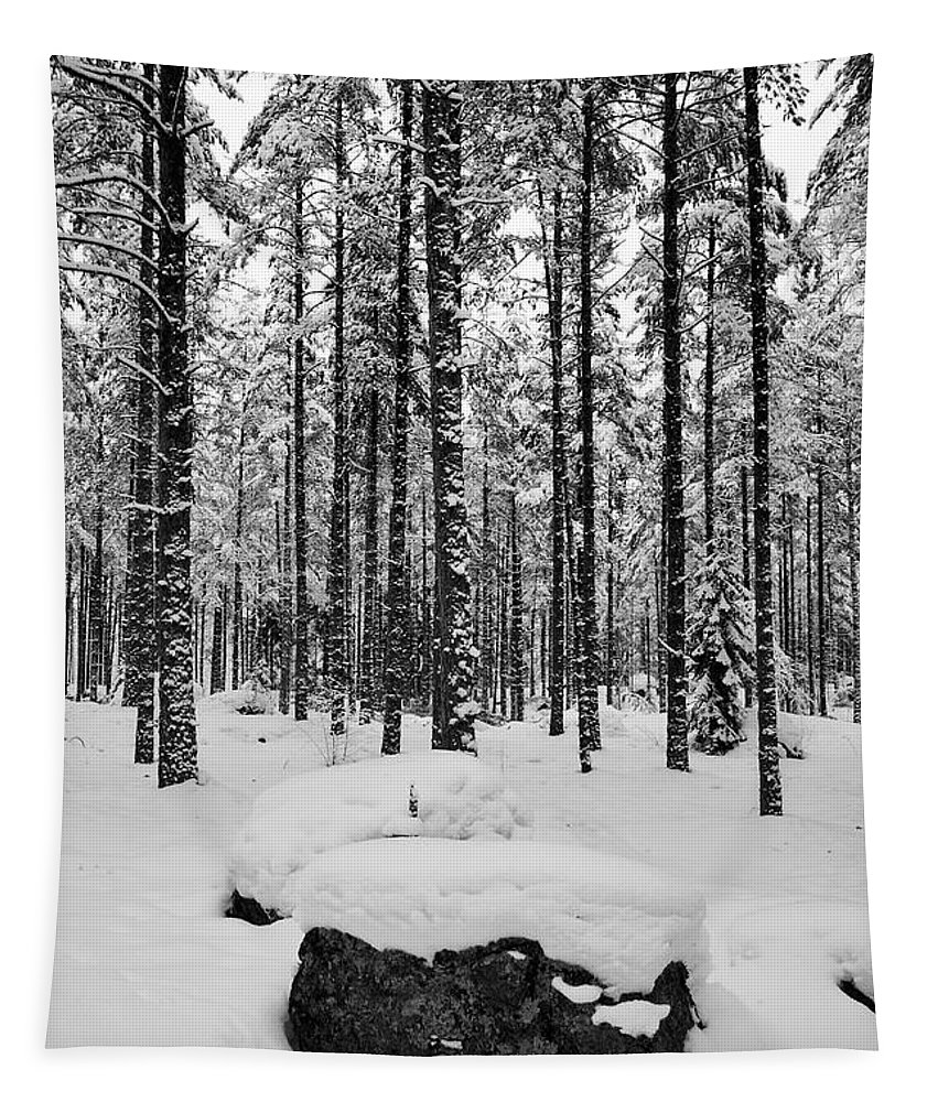 Finland Tapestry featuring the photograph Pine Forest Winter by Jouko Lehto