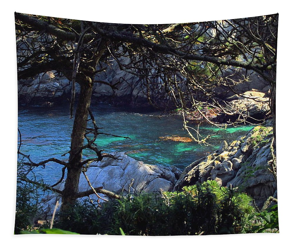 Point-lobos Tapestry featuring the photograph A Beautiful Cove At Point Lobos by Joyce Dickens