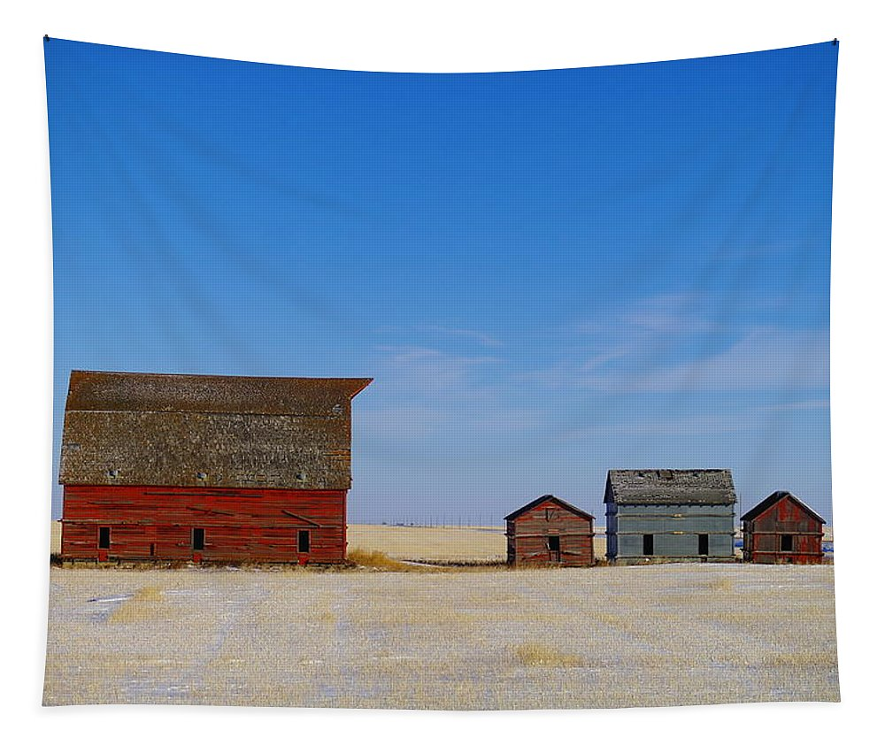 Barns Tapestry featuring the photograph A Big Barn And Three Small Ones by Jeff Swan