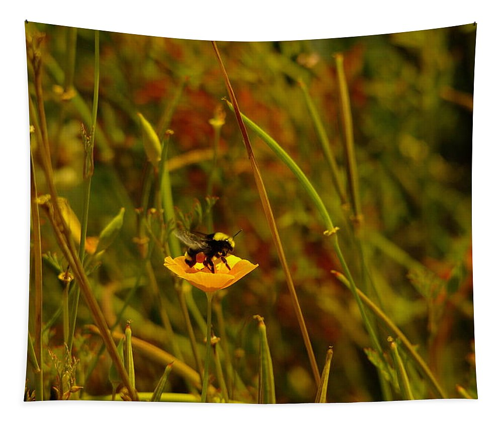 Bumble Bees Tapestry featuring the photograph A Bumble In A Cup by Jeff Swan