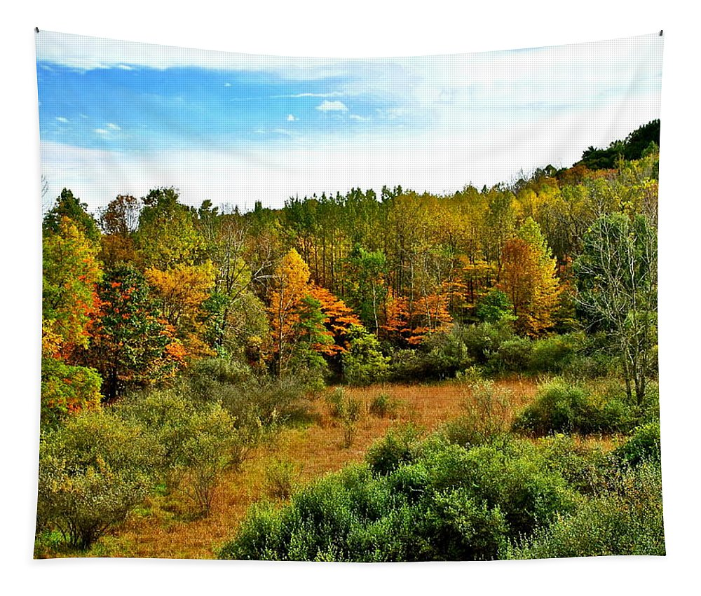 Landscape Tapestry featuring the photograph A Cleveland Landscape by Frozen in Time Fine Art Photography