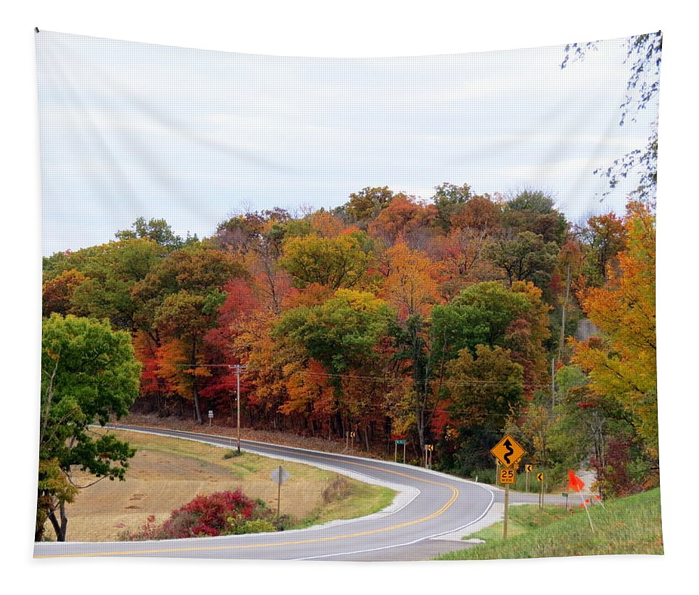 Autumn Tapestry featuring the photograph A Country Road In Autumn by Kay Novy