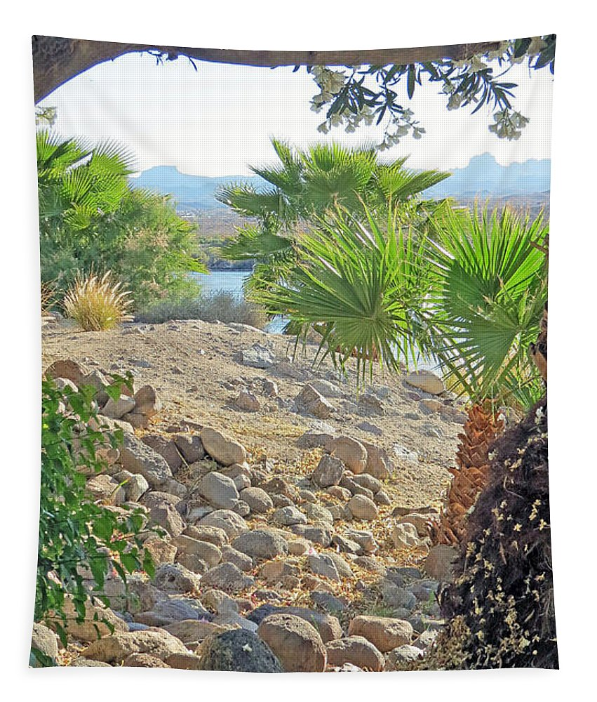 Desert Tapestry featuring the photograph A Desert Landscape by Kay Novy