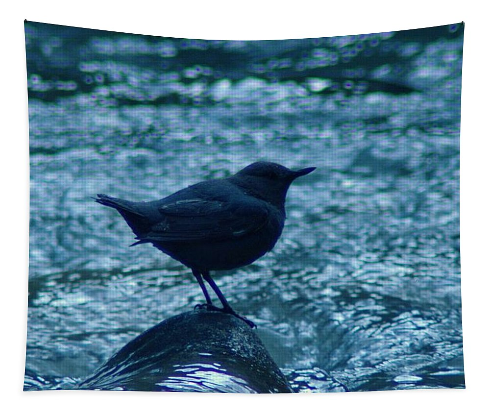 Birds Tapestry featuring the photograph A Dipper On A Rock by Jeff Swan