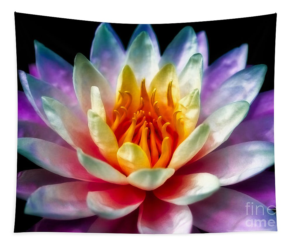 Asia Tapestry featuring the photograph A Flower by Adrian Evans