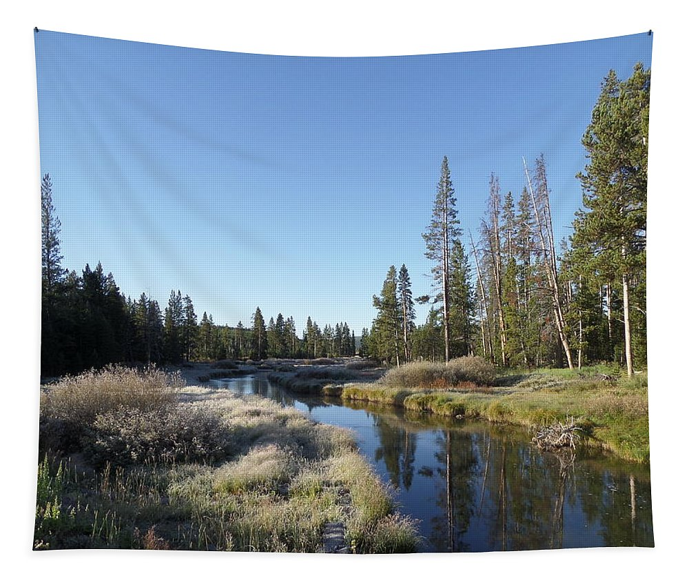 Blue Tapestry featuring the photograph A Frosty Morning Along Obsidian Creek by Frank Madia