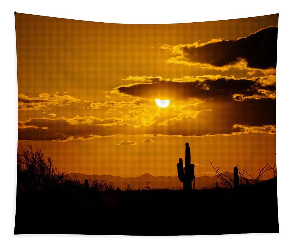 Sunset Tapestry featuring the photograph A Golden Southwest Sunset by Saija Lehtonen