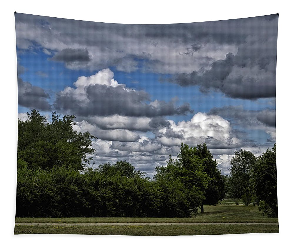 Storm Tapestry featuring the photograph A July Cold Front Rolling By by Thomas Woolworth