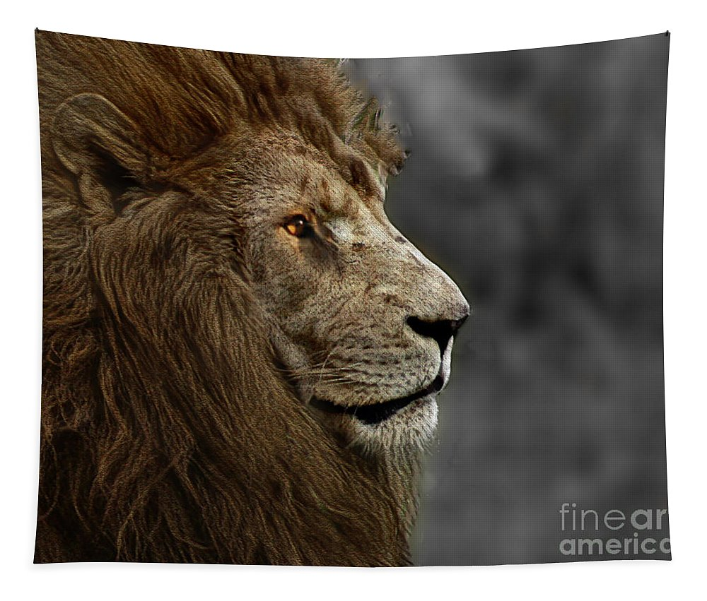 Animal Tapestry featuring the photograph A King's Look by Ben Yassa