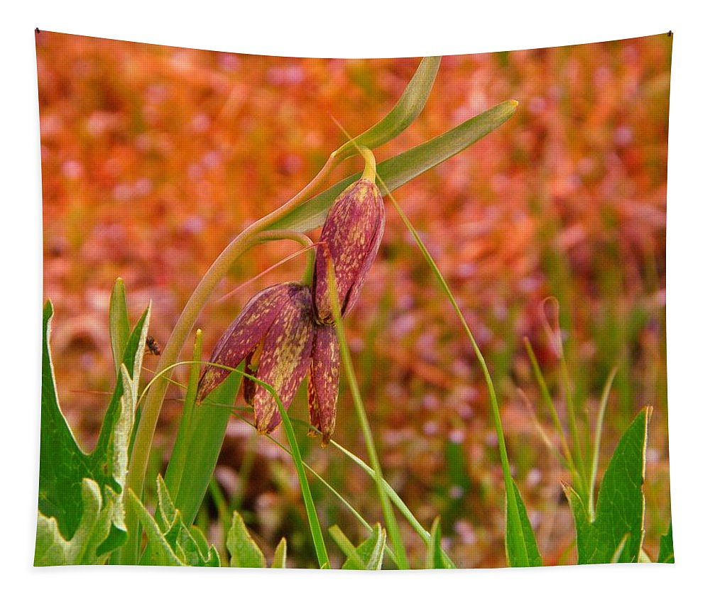 Wildflowers Tapestry featuring the photograph A Little Spring Miracle by Jeff Swan
