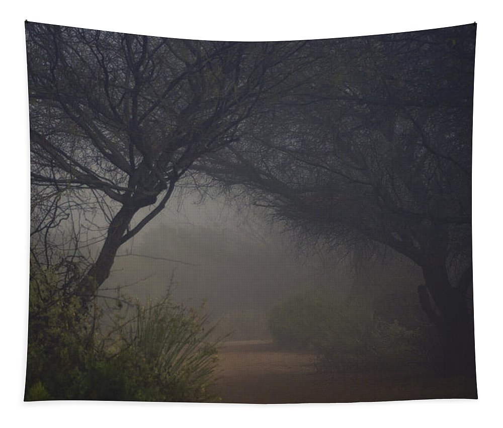 Trees Tapestry featuring the photograph A Misty Morning by Saija Lehtonen