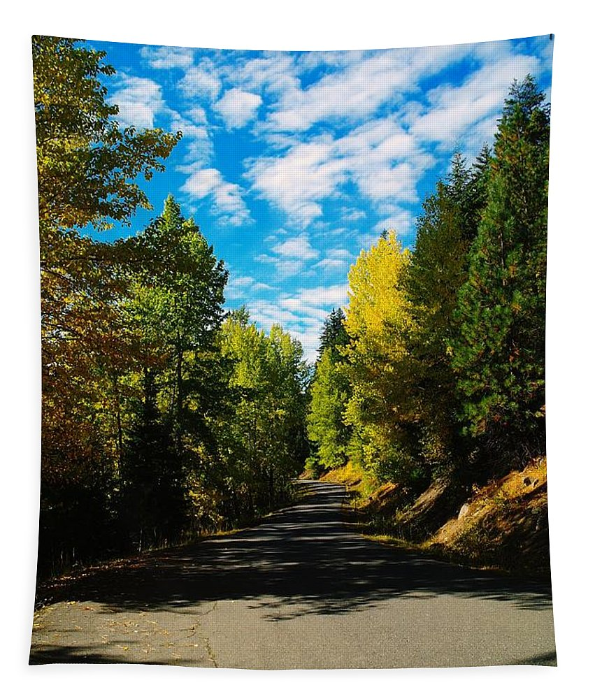 Autumn Tapestry featuring the photograph A Narrow Autumn Road by Jeff Swan