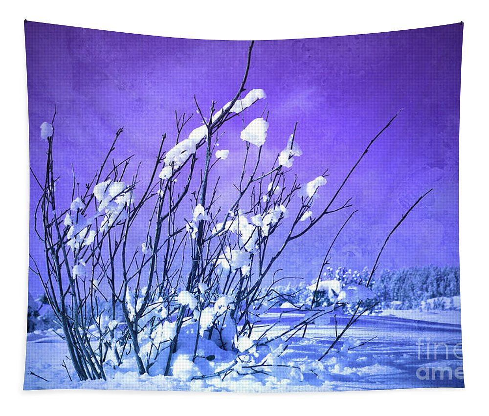 Purple Tapestry featuring the photograph A Purple Winter by Tara Turner