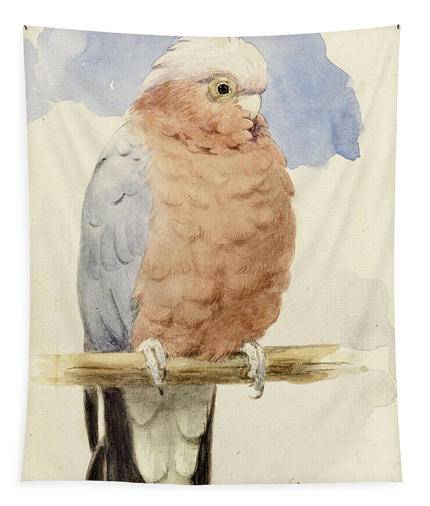 Cockatoo Tapestry featuring the painting A Rose Breasted Cockatoo by Henry Stacey Marks