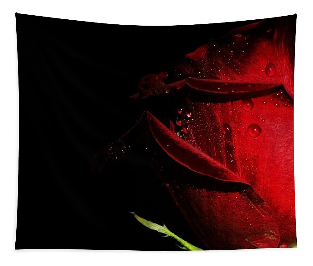 Rose Tapestry featuring the photograph A Rose Is A Rose by Susan McMenamin