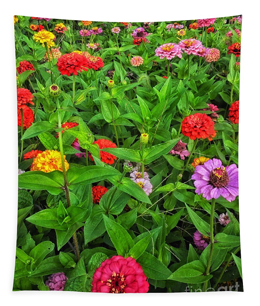 Floral Tapestry featuring the photograph A Sea Of Zinnias 04 by Thomas Woolworth