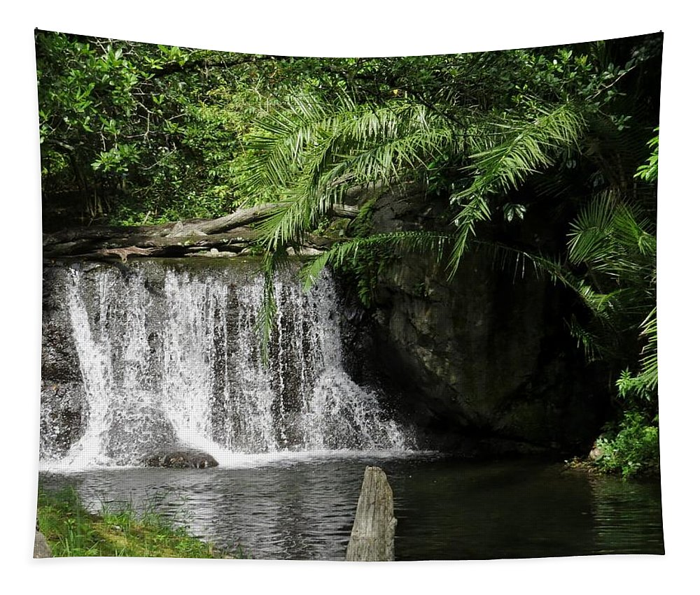 Waterfall Tapestry featuring the photograph A Small Waterfall by Zina Stromberg