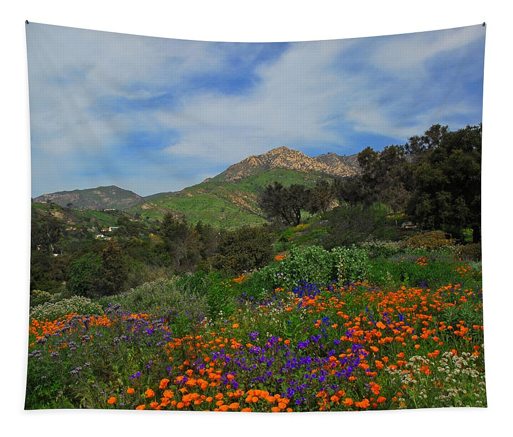 Santa Barbara Tapestry featuring the photograph A Taste Of Heaven by Lynn Bauer