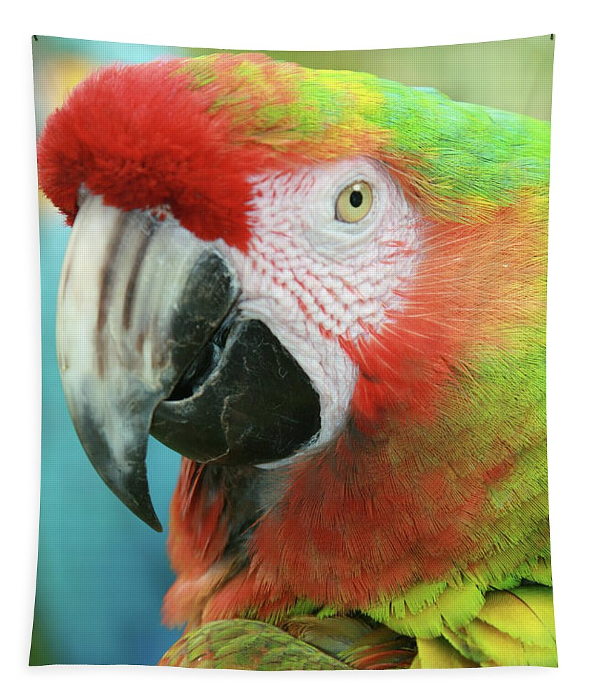 Aloha Tapestry featuring the photograph A Thing Of Beauty Is A Joy Forever by Sharon Mau