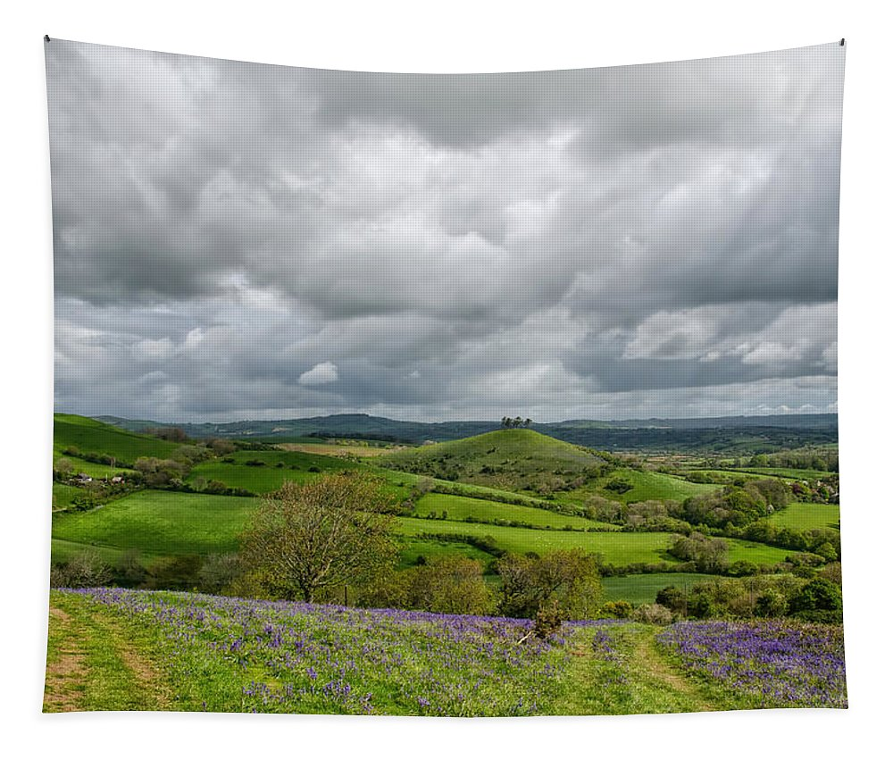 Southwest Tapestry featuring the photograph A View To Colmer's Hill by Susie Peek