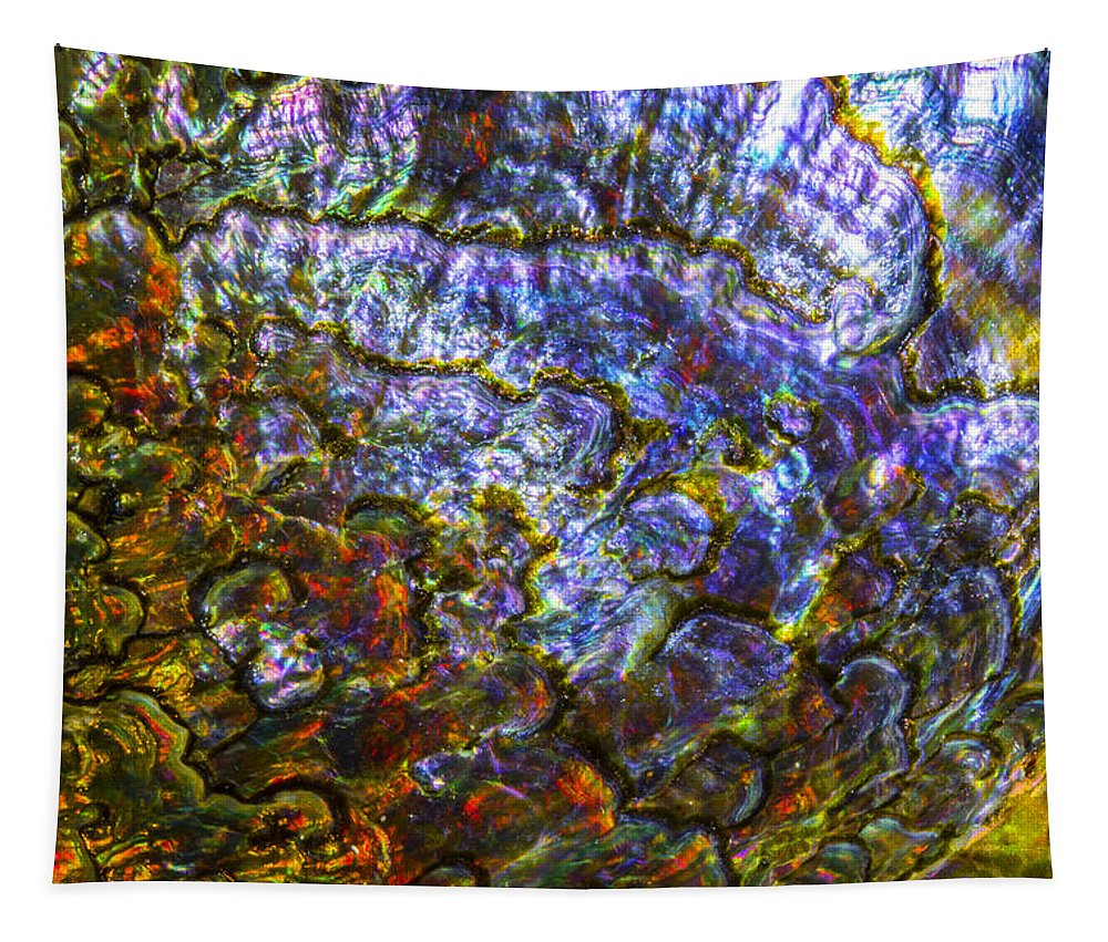 Abalone Shell Tapestry featuring the photograph Abalone Shell 3 by Robert Storost