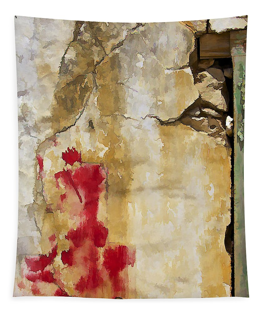 Abandon Tapestry featuring the photograph Abstract Colorful Wall of Aruba by David Letts