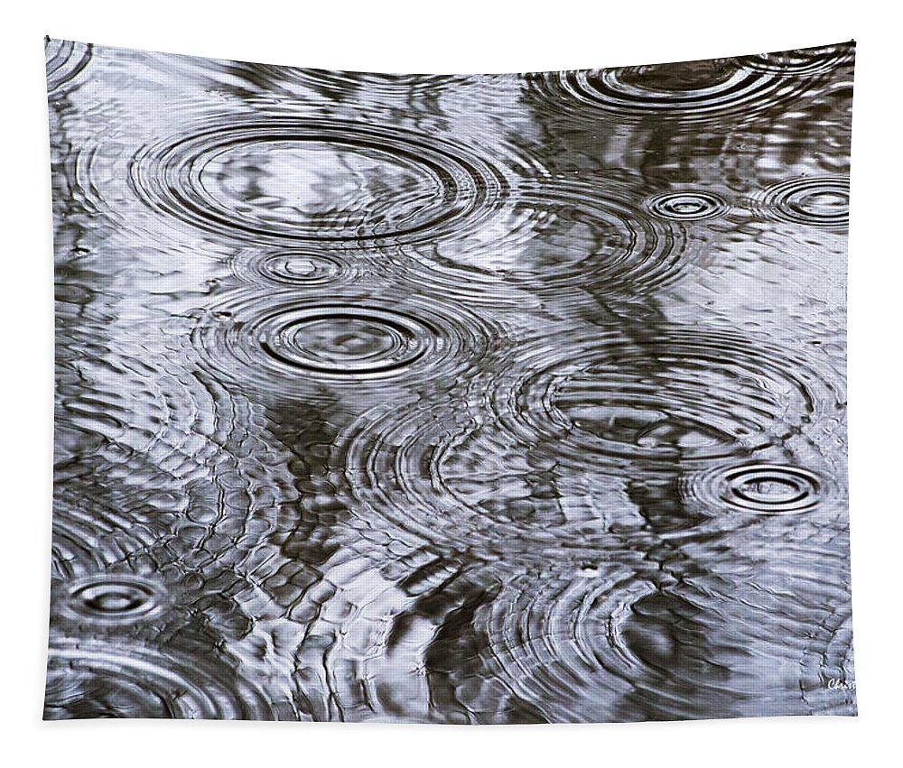 Water Tapestry featuring the photograph Abstract Raindrops by Christina Rollo