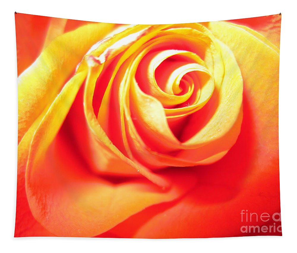 Floral Tapestry featuring the photograph Abstract Rose 2 by Tara Shalton