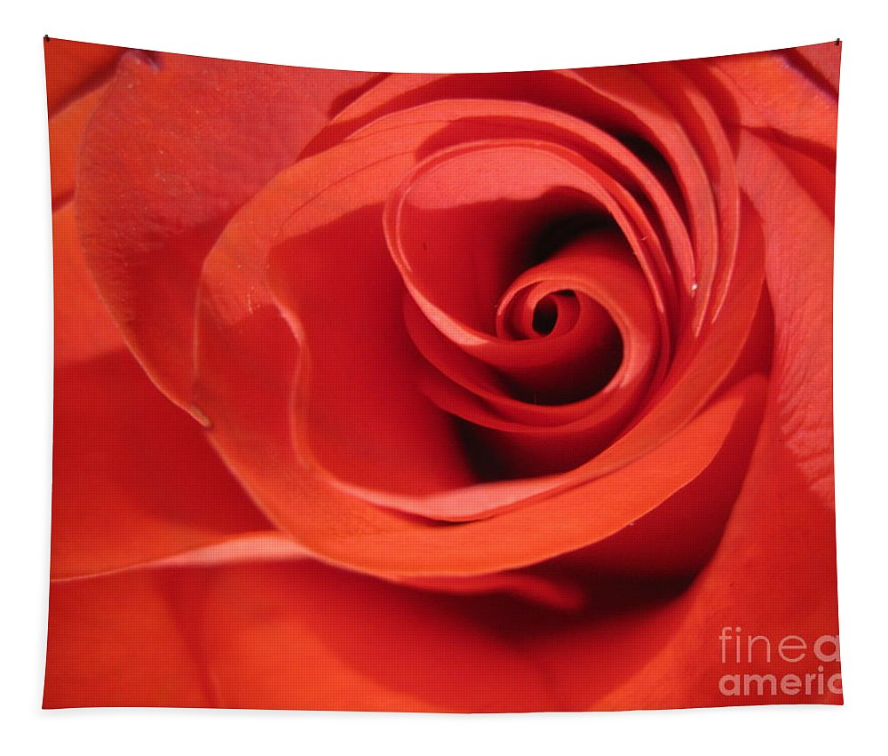 Floral Tapestry featuring the photograph Abstract Orange Rose 9 by Tara Shalton
