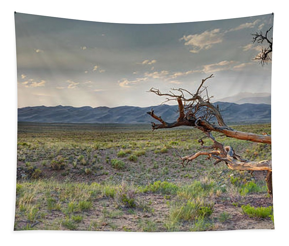 Alamosa Tapestry featuring the photograph Across A Great Wilderness by OLena Art Brand