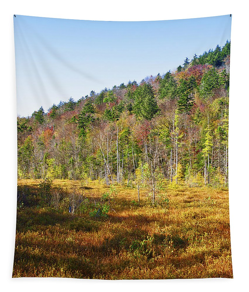 Adirondack's Tapestry featuring the photograph Adirondack Color Vi by David Patterson