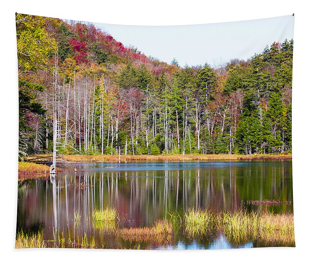 Adirondack's Tapestry featuring the photograph Adirondack Color Viii by David Patterson