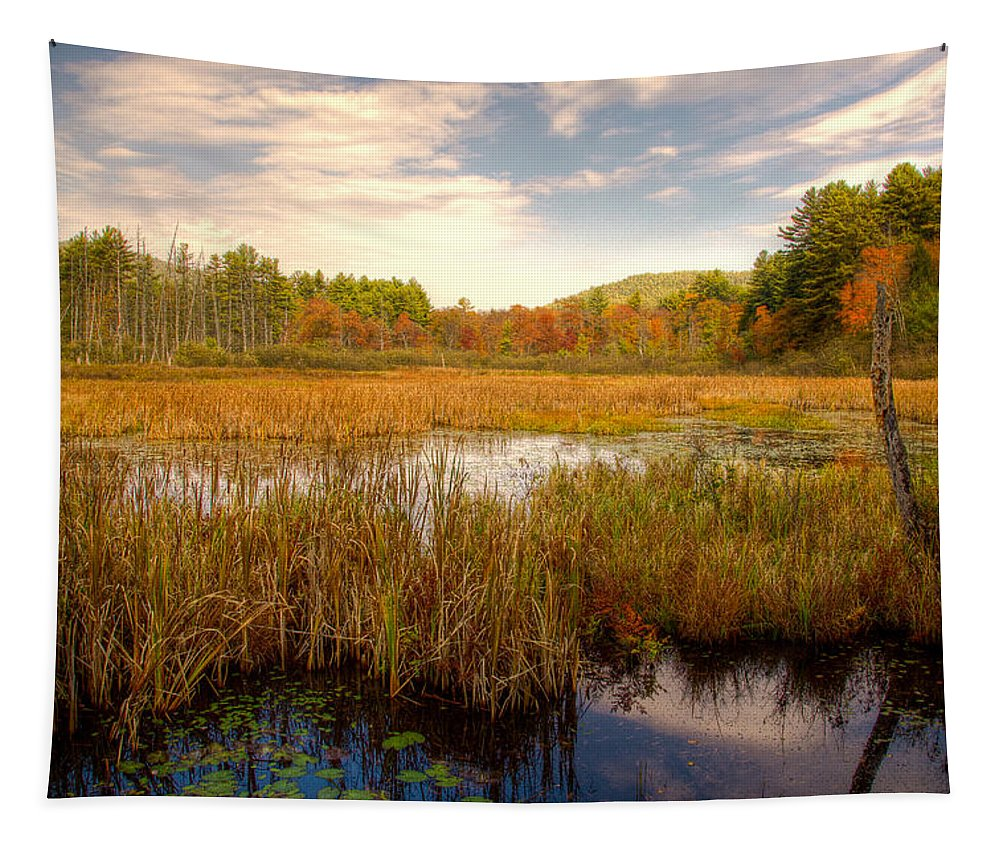 Adirondack's Tapestry featuring the photograph Adirondack Pond by David Patterson