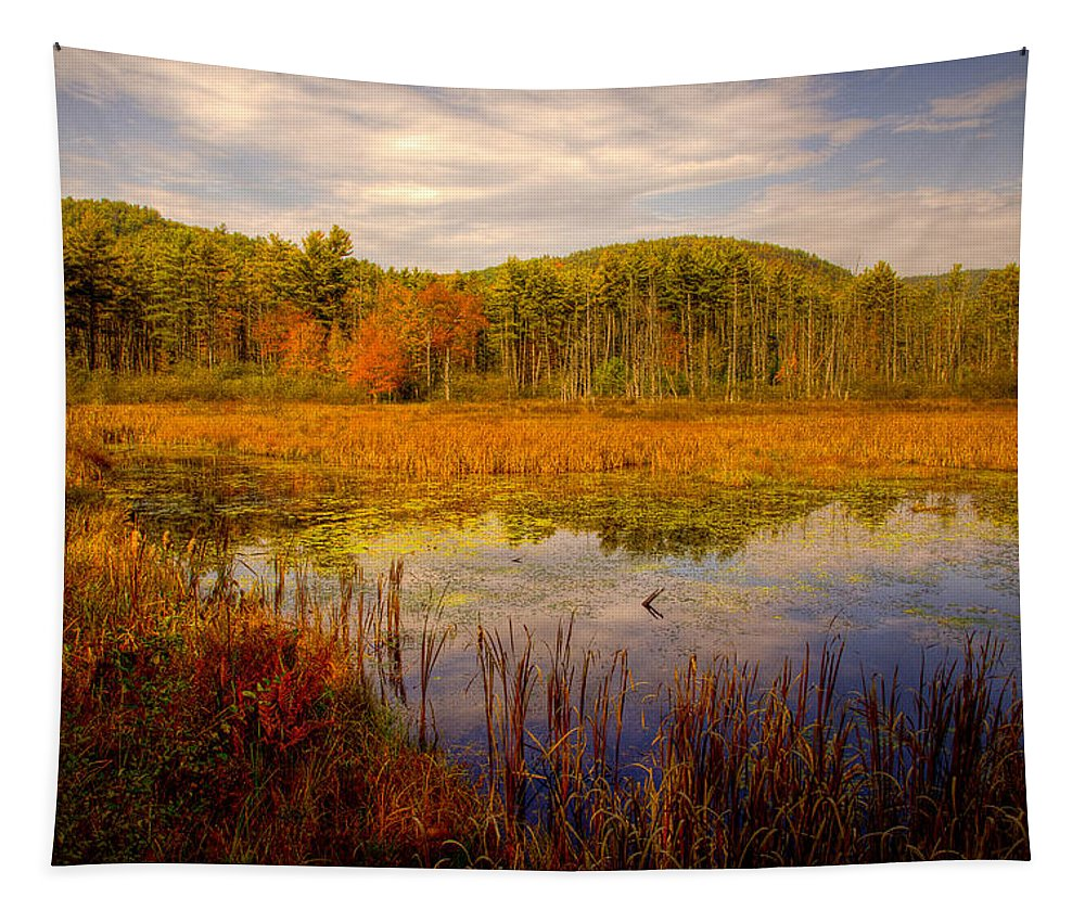Adirondack's Tapestry featuring the photograph Adirondack Pond II by David Patterson