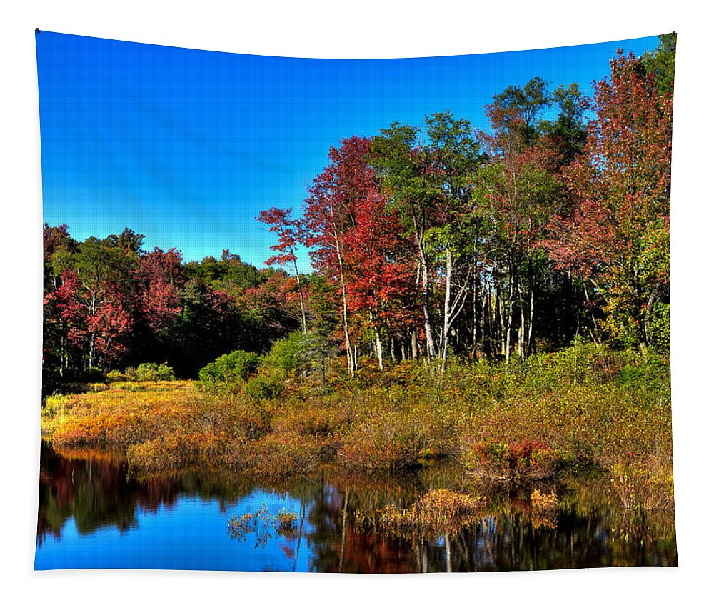 Adirondack's Tapestry featuring the photograph Adirondack Stream In Autumn by David Patterson