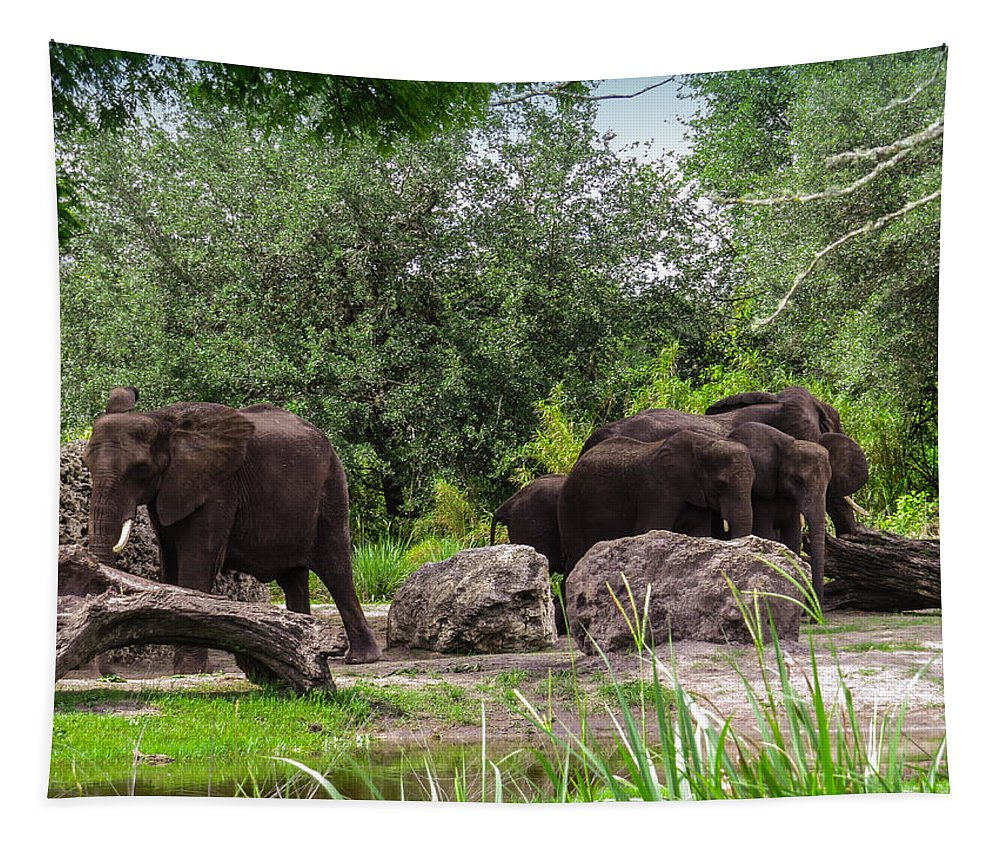 African Elephants Tapestry featuring the photograph African elephants by Zina Stromberg