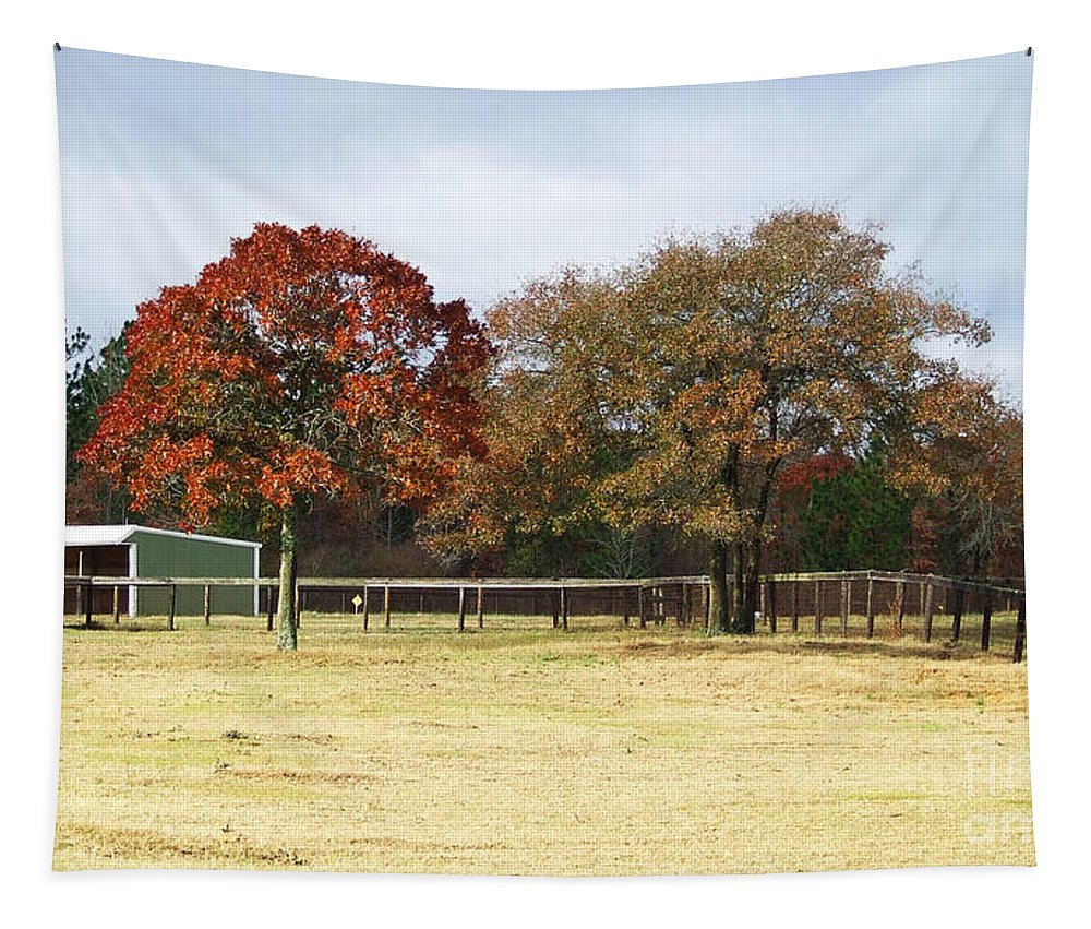 Aiken Tapestry featuring the photograph Aiken by Andrea Anderegg