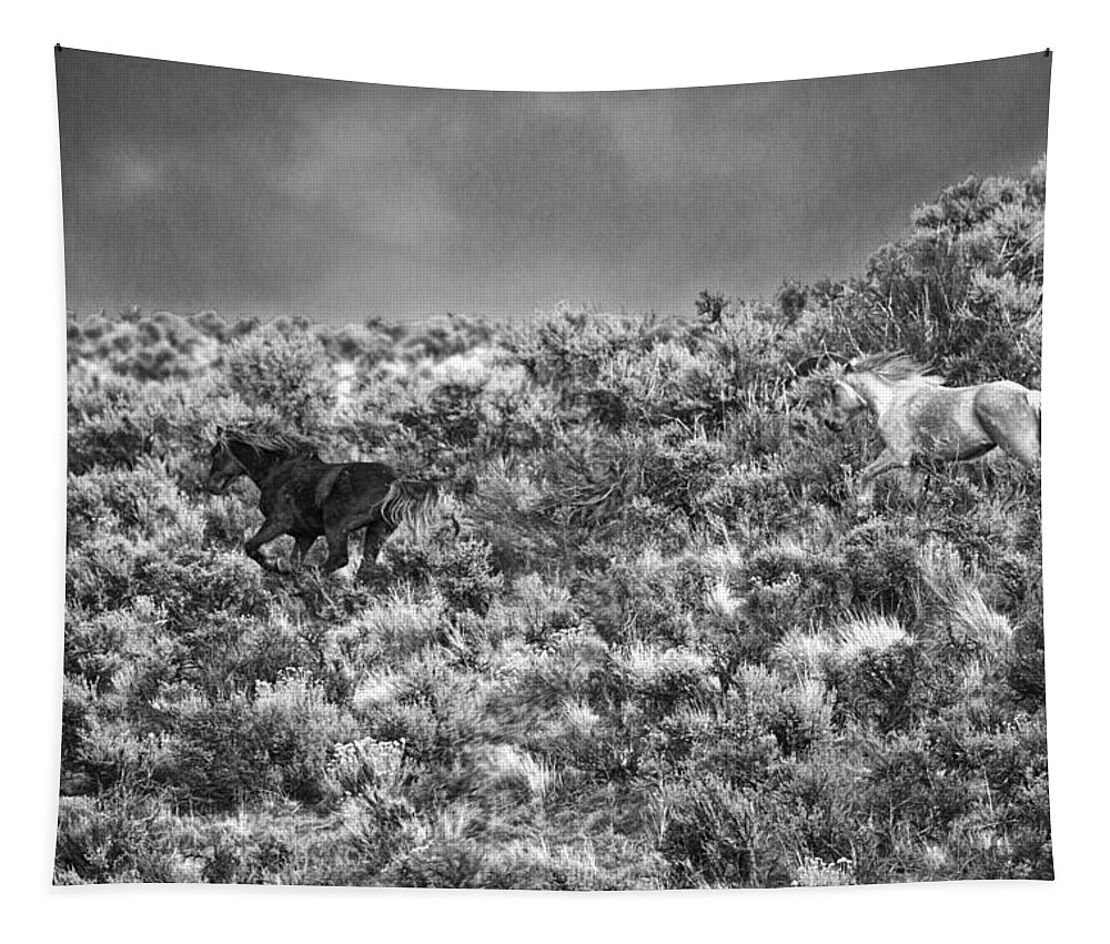 All Out Gallop Tapestry featuring the photograph All Out Gallop by Wes and Dotty Weber