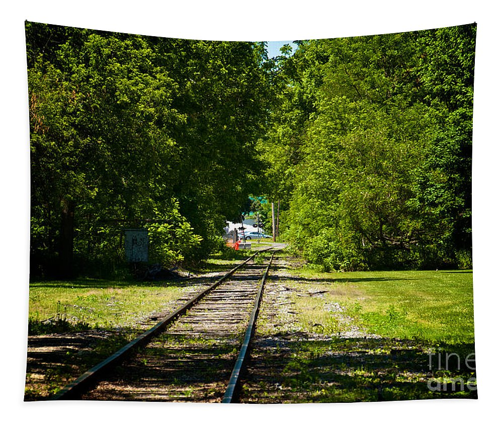 Phelps Tapestry featuring the photograph Along The Rails by William Norton