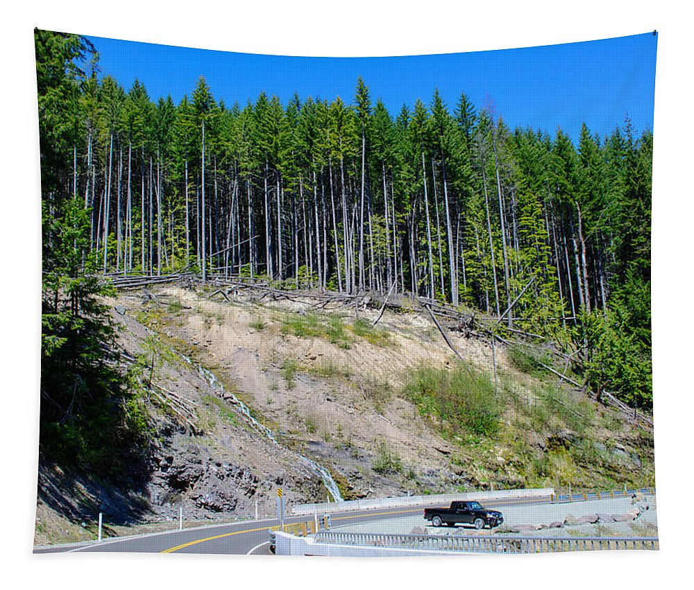 Landscape Tapestry featuring the photograph Along The Roadway by Tikvah's Hope